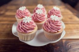 cakeland-cupcakes